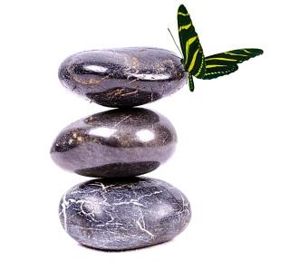 pierre-zen-papillon-1560x1033
